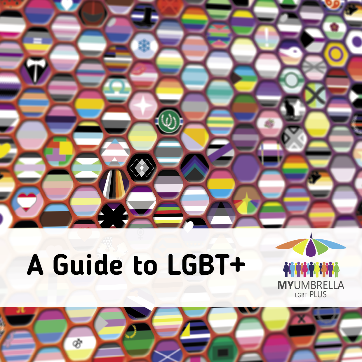 Front Cover of Guide to LGBT+ 2018